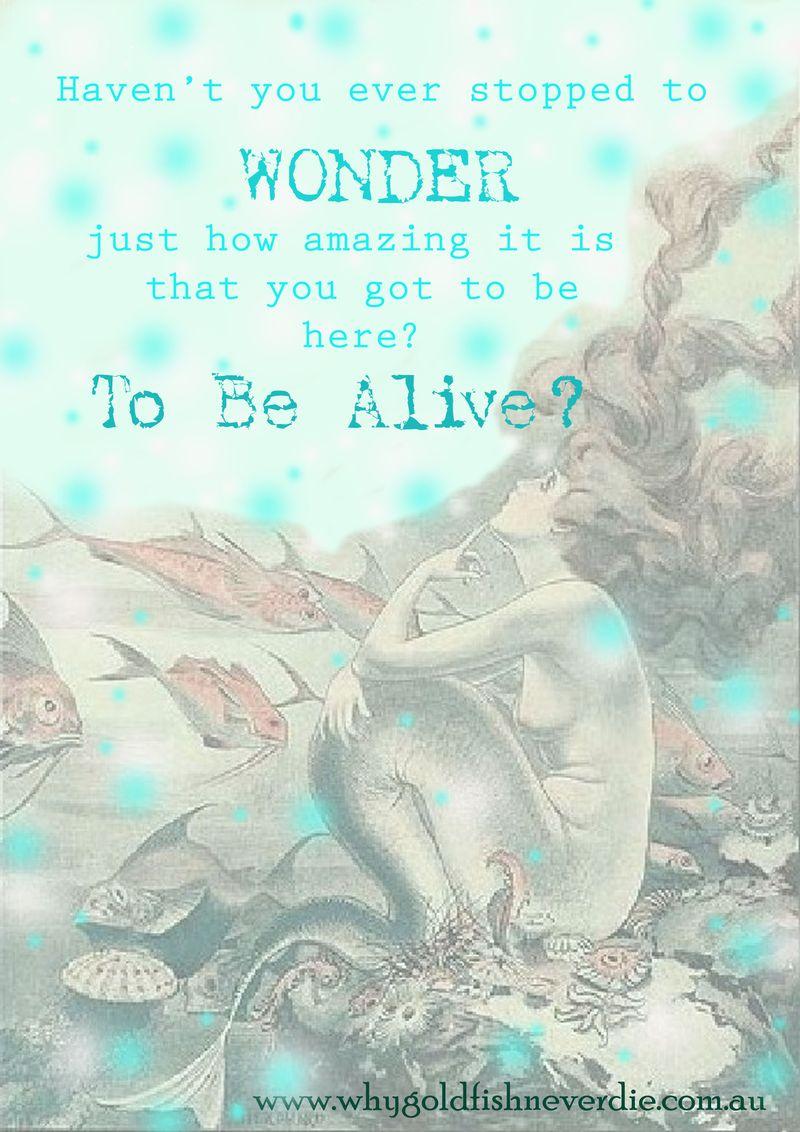 Mermaid poster shae reid 2012