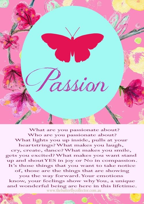 Butterfly word passion copy